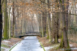 DSC01784-1brücke Tierparkcop1900